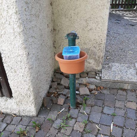 Schatzdose Station 5 Zirl Aktiv Schatzsuche